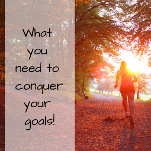 What You Need To Conquer Your Goals